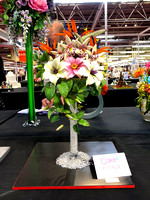 Class C: Floral Display – Firework Theme